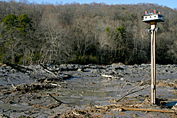 Coal ash from the TVA spill in Harriman, TN fills a former creekbed