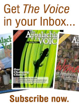 Get the Voice in your inbox - subscribe now