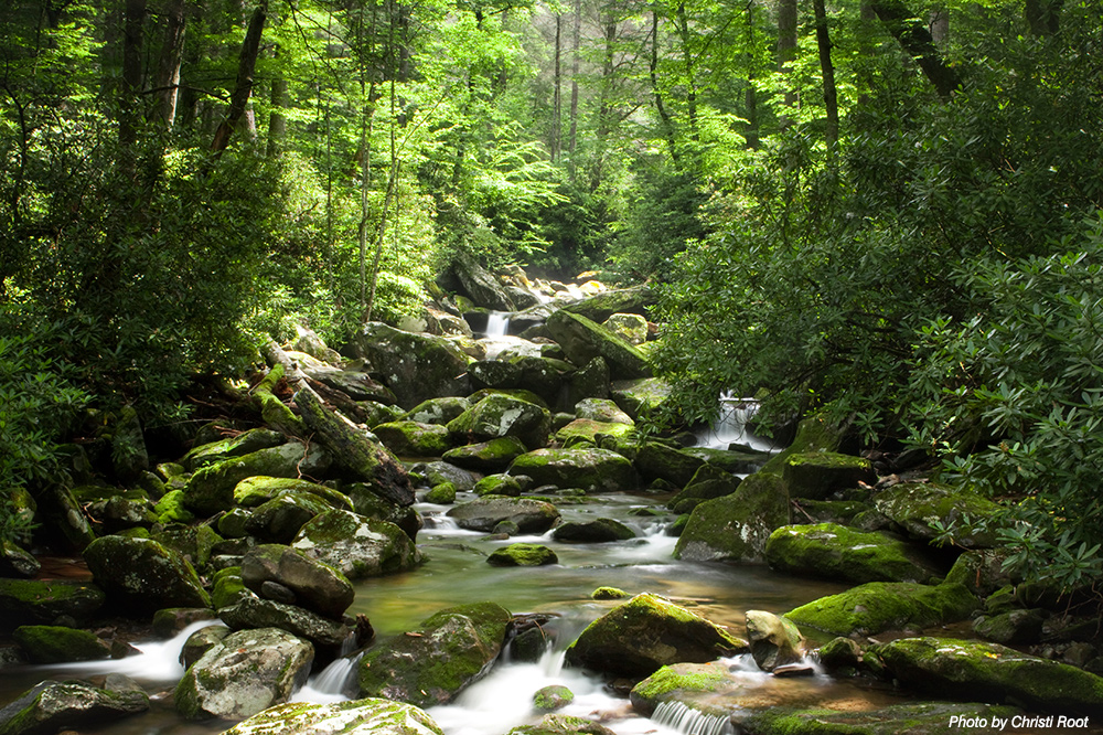 stream in the mountains - photo #19