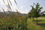 Valle Crucis Park