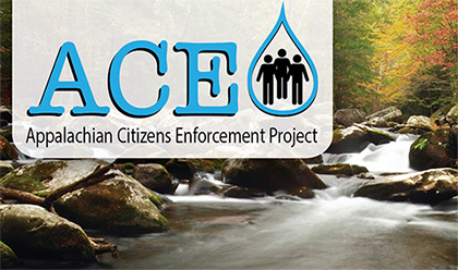 ace_project