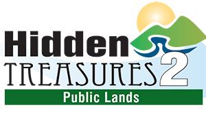 hiddentreasures2