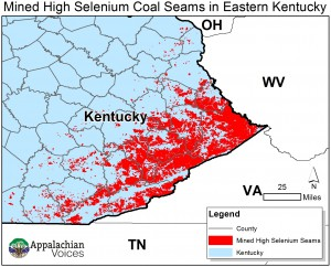 Kentucky High Selenium Coal Seems