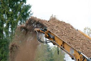 The uptick in woody biomass harvesting across the Southeast, partially driven by increased European demand for wood pellets, has set off a debate about how, and if, forest biomass can be harvested sustainably. Image copyright Kurmis/iStockPhoto