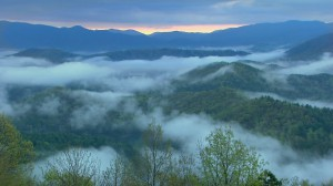 Appalachian Voices Tenn. Director welcomed his second daughter this week, and we added our name to the long list supporting the Tennessee Wilderness Act.
