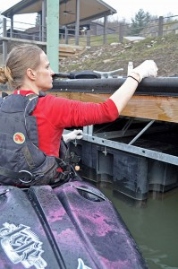 Erin Savage of Appalachian Voices collects a water sample from the Elk River downstream from the spill site on Jan. 10. Photo by Eric Chance
