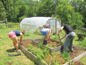 """High Rocks girls — and the honorary """"High Rocks boy"""" — maintain a garden that supplies healthy and fresh food for campers' meals. Photo by Molly Moore"""