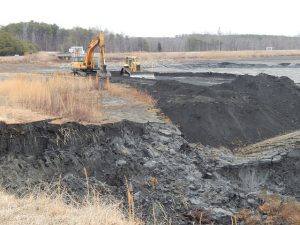 Duke Energy entered a plea agreement with federal prosecutors to resolve a federal criminal investigation into its handling of coal ash in North Carolina.