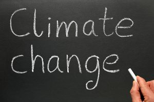 climate change on blackboard