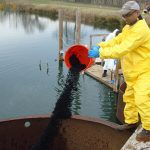 Scientists implement bioremediation techniques in an effort to reduce the volume of PCBs at the overflow pond in Altavista, Va. Photo by Kevin Sowers