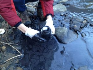 Erin Savage of Appalachian Voices collects a sample from Fields Creek following the 2014 slurry spill. Testing revealed high levels of contaminants including MCHM.