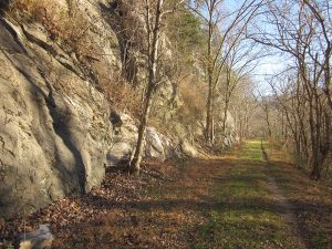 Chessie Nature Trail, photo by Joe Tennis