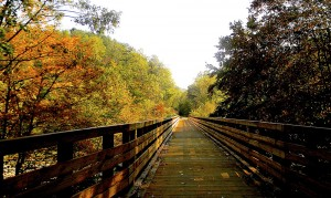 Autumn colors emerge along this bike-friendly wooden bridge. Photo courtesy of the Dawkins Line Rail Trail