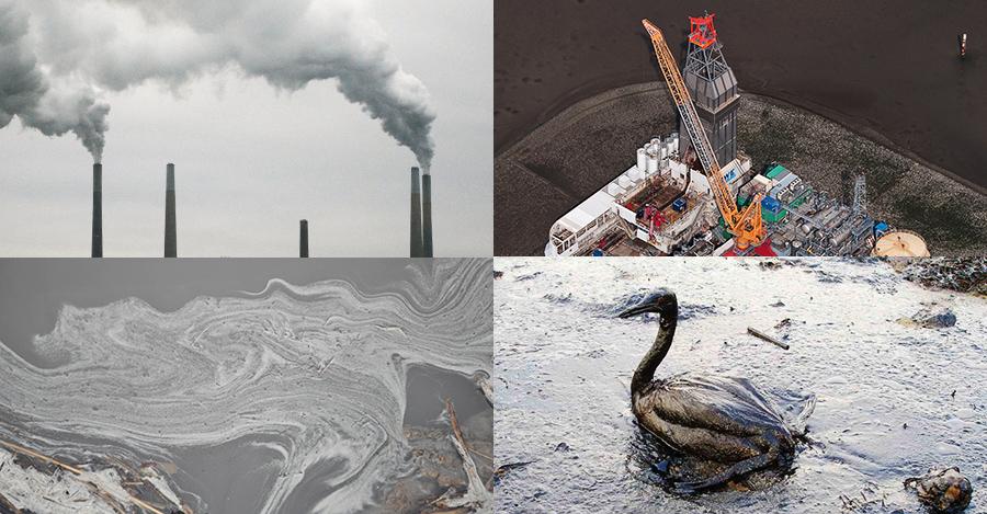 "Offshore Oil Rig image: by Ralf Roletschek licensed under CC. ""Oiled Bird - Black Sea Oil Spill"" by Marine Photobank, licensed under CC"