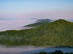 The U.S. Forest Service owns 1.6 million acres in Virginia. Overlooking Jefferson National Forest, Dickenson County. Photo by Bill Harris, billharrisphotography@comcast.net