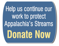 Donate now to help us continue to protect Appalachian streams