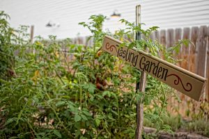 Nothing is fresher than a bite picked from the Tasting Garden, which is located along the patio in back of the restaurant and is available to patrons. Photo courtesy of 621studios.com