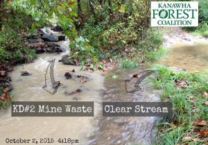 Photo courtesy Kanawha Forest Coalition