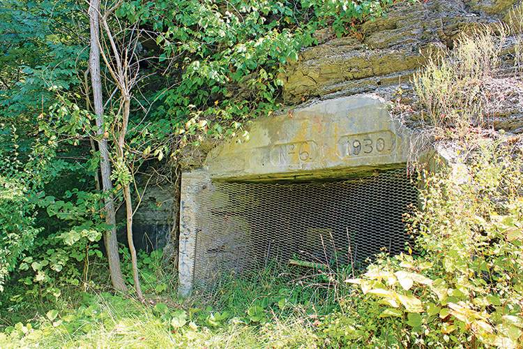All of the sites in the new study have coal mining features, such as this  abandoned underground mine portal at a proposed recreational site in Haysi.
