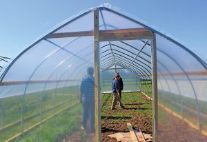 Grow Appalachia Program Director David Cooke stands inside a gothic-style high tunnel built for Greenhouse17, a domestic violence shelter outside of Lexington, Ky. Photo courtesy Grow Appalachia