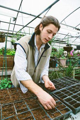 Man planting hemp seeds