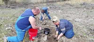 former miners plant seedlings