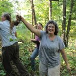 women harvest black cohosh