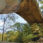 underside view of Natural Bridge