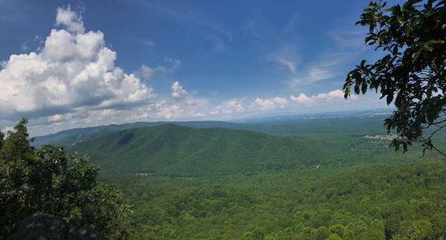 View from the Appalachian Trail of Torry Ridge in Augusta County, Va. The proposed Atlantic Coast Pipeline would cut a swath over the mountain. (Photo courtesy Joe Stinnett)