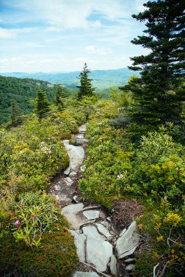 rocky trail at the peak of the mountain