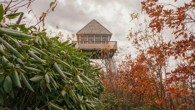 Lookout tower above the trees