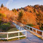 walkway up the mountain