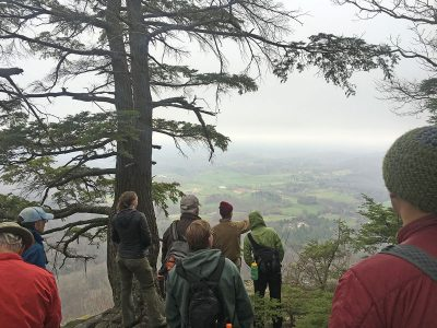 hemlock hike