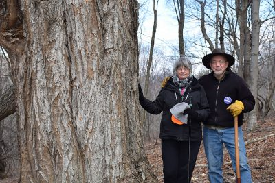 Bill and Lynn Limpert by tree