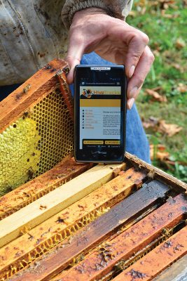 beekeeping software