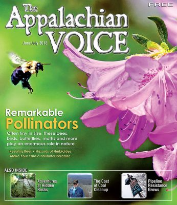 Voice June/July cover