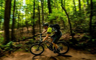 Mountain biking in Pisgah