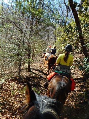 horse-riders