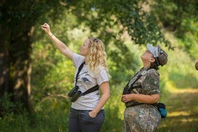 bird surveyors