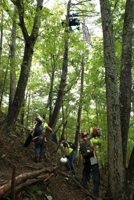 Loggers walk beneath tree-sit