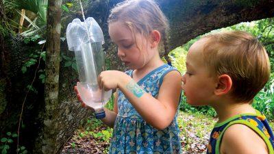 kid holding beetle trap