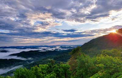 Forested mountain view
