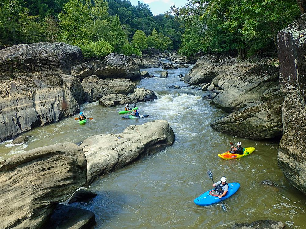 Kayakers converge below a rapid