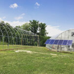 solar array by greenhouse