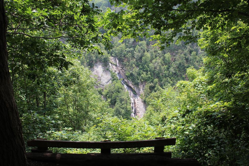 overlook on trail