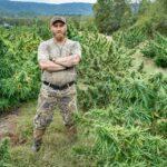 man in front of hemp field