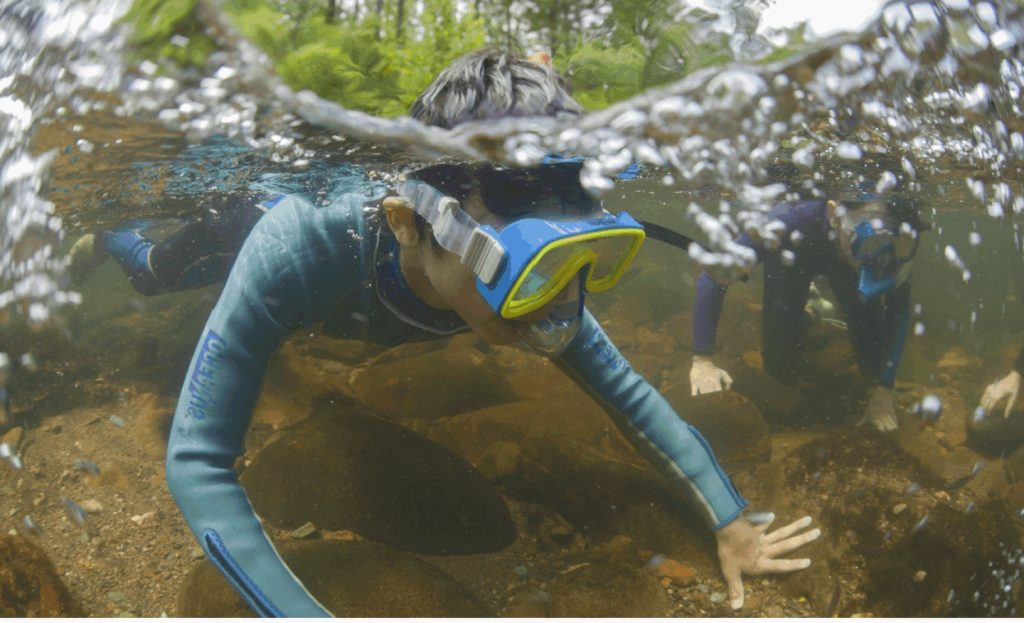 A boy in a snorkel mask and long-sleeve shirt floats on top of the water, touching the bottom