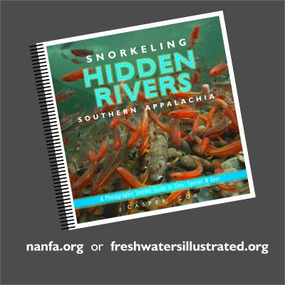"""Cover of the book """"Snorkeling Hidden Rivers Southern Appalachia"""""""
