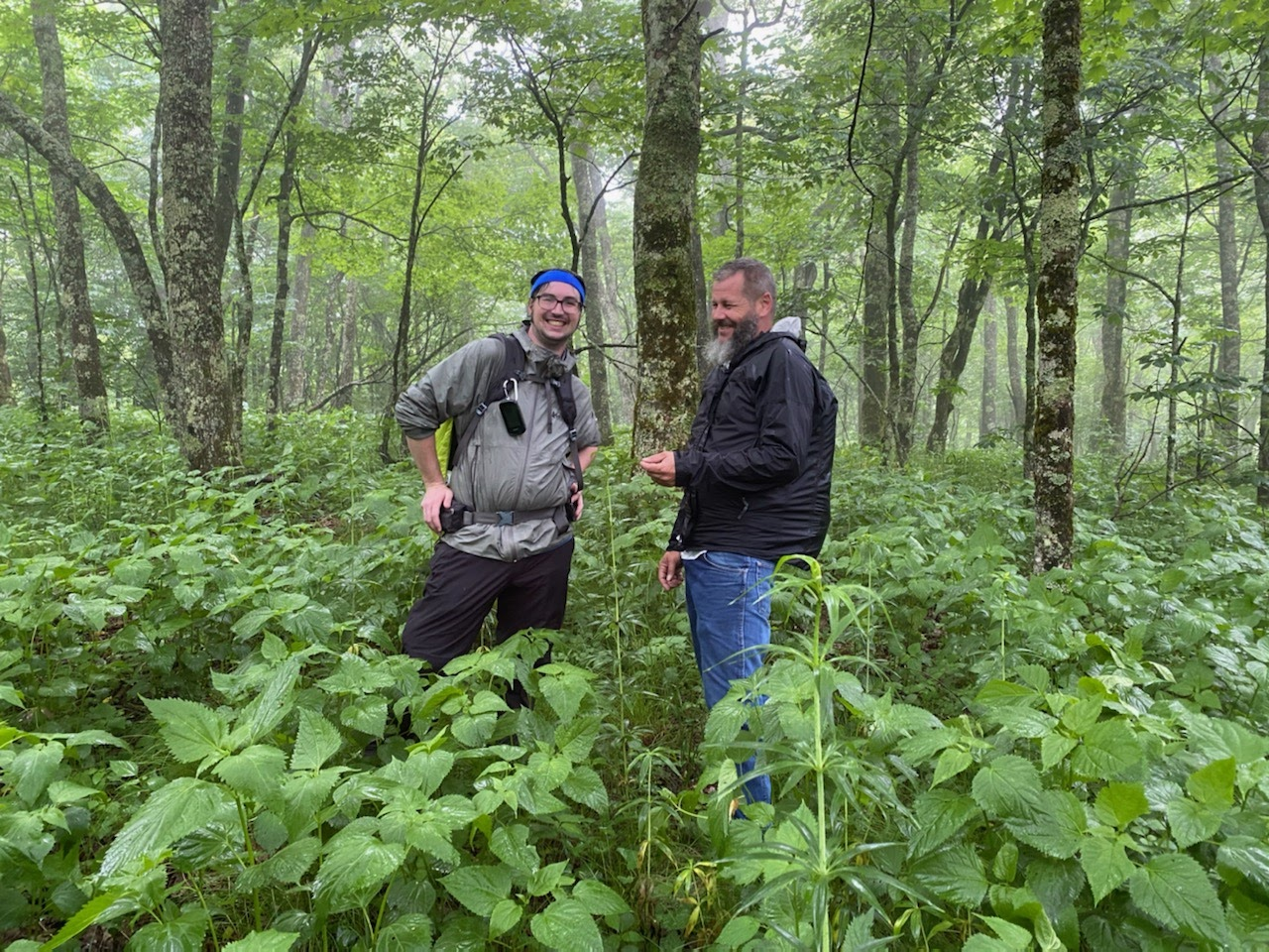 Two smiling men surrounded by green plants