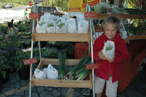 Young Journey Emmons displays spring sunflower sprouts at her parents Harmony Acre Soap Company stand during the Watauga County, N.C.farmers market.